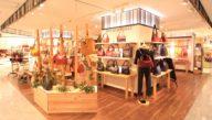 LACHIC Fukuoka Tenjin Store